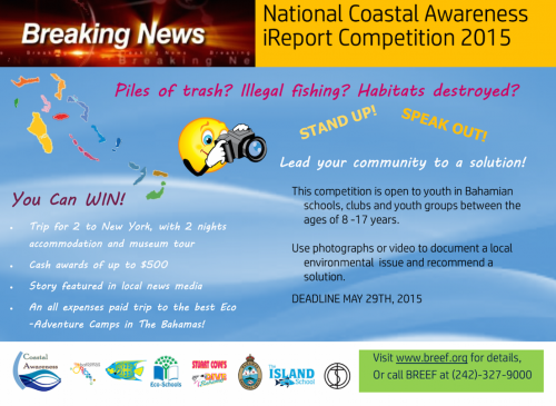 2015 Coastal Awareness competition flyer for web